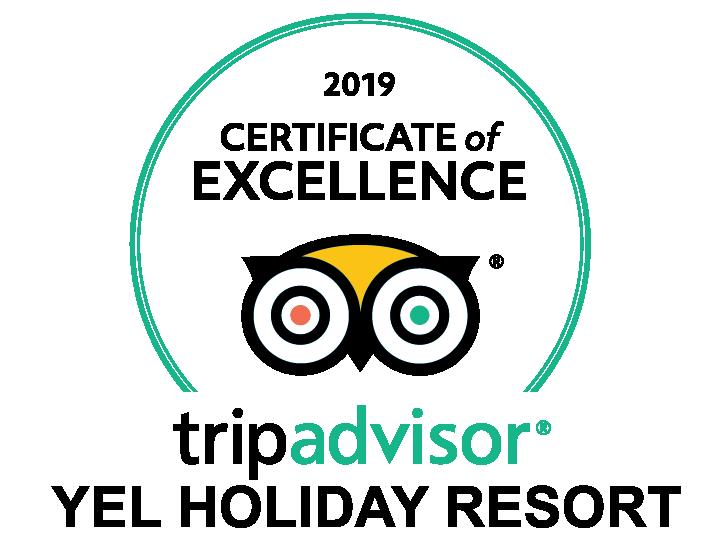 tripadvisor_2019.png